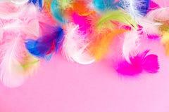 Fond abstrait de plumes Le fond pour la conception avec le colorfull mou fait varier le pas du modèle Plumes pelucheuses molles d Photo libre de droits