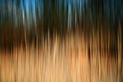Fond abstrait de roseau Images libres de droits