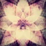 Fond abstrait de rosette illustration stock