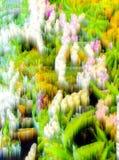 Fond abstrait de tache floue et nature molle Photo stock