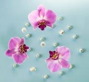 Fond abstrait des fleurs Photo stock