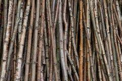 Fond abstrait en bois rustique âgé Photos stock