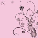 Fond abstrait floral Photographie stock libre de droits