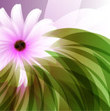 Fond abstrait floral Photo stock