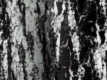 Fond abstrait noir et blanc Photographie stock
