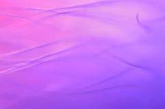 Fond abstrait pourpre rose des plumes d'oiseau Plan rapproché de plume Belles lignes et courbes Images stock