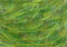 Fond abstrait vert Photographie stock