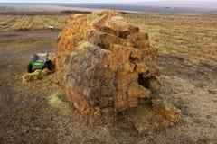 Fond agricole d'automne avec des balles de paille images libres de droits