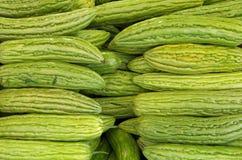 Fond amer de gua de ku de melon Image libre de droits