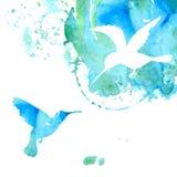 Fond animal avec des colibris illustration stock