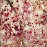 Fond antique en bambou de fleur rose grunge Photos libres de droits