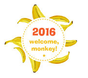 Fond approximatif de banane Images stock