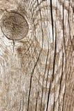 Fond approximatif en bois avec le noeud Photo libre de droits