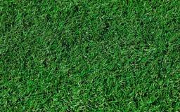 Fond artificiel d'herbe Image libre de droits
