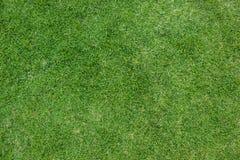 Fond artificiel d'herbe Photos stock