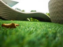 Fond artificiel de texture d'herbe verte Photos libres de droits