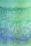 Fond artistique de sarcelle d'hiver Photographie stock libre de droits