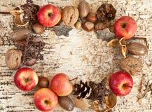 Fond avec des écrous et des pommes Photos stock