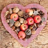 Fond avec des écrous et des pommes Photo libre de droits