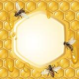 Fond avec des abeilles Images stock