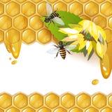 Fond avec des abeilles Photo libre de droits