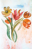 Fond avec des fleurs de tulipes Photos libres de droits