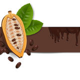 Fond avec des graines de cacao Images libres de droits