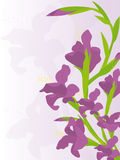 Fond avec des iris Images stock