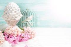 Fond avec des jacinthes de fleurs fraîches Images stock
