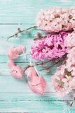 Fond avec des jacinthes de fleurs fraîches et des oiseaux décoratifs Photos libres de droits