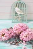 Fond avec des jacinthes, fleurs de saule Photographie stock