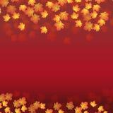 Fond avec des lames d'automne Photos libres de droits