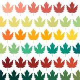 Fond avec des lames symbole du Canada Fond pour la carte postale Calibre pour une carte postale d'automne illustration de vecteur
