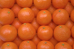 Fond avec des mandarines Photo stock