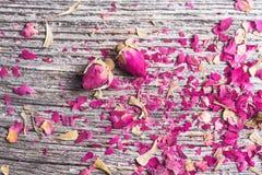 Fond avec des pétales de rose et deux fleurs sèches Images libres de droits