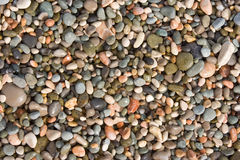 Fond avec des pierres de mer Image stock
