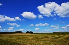 Fond avec des prés et des nuages Photos stock