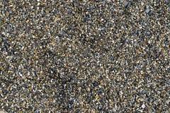 Fond avec différentes pierres de mer de couleur Photographie stock