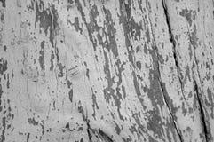 Fond avec l'arbre divisé par texture de noeuds Photographie stock libre de droits