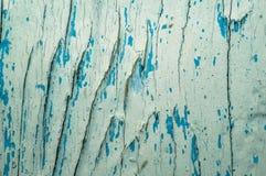 Fond avec l'arbre divisé par texture de noeuds Photographie stock