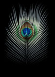 Fond avec la clavette de paons Photographie stock