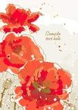 Fond avec la fleur 3 du pavot Images libres de droits