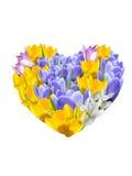 Fond avec la fleur et le coeur. Photo stock