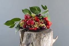 Fond avec la fraise et les livres rouges sur la table Photos libres de droits