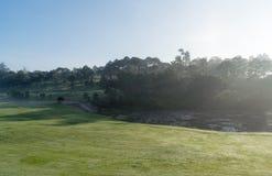 Fond avec le beau pré vert et la lumière du soleil jaune, colline d'herbe de couverture de brouillard images stock