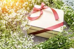 Fond avec le cadre de fleur blanche et boîte-cadeau avec le ri gentil rouge Photographie stock