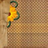 Fond avec le cadre et la fleur pour desing illustration de vecteur
