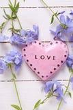 Fond avec le coeur décoratif rose et le bleu tendre frais la Floride Photo stock