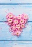 Fond avec le coeur des fleurs et des pétales roses sur W bleu Images libres de droits
