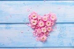 Fond avec le coeur des fleurs et des pétales roses sur W bleu Image libre de droits